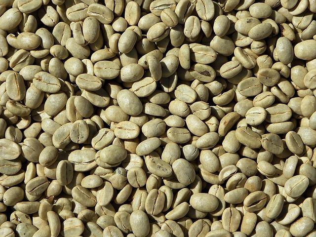 Gröna kaffebönor, orostade
